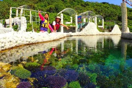 【読谷村開催】海の「サンゴ礁」と陸の「サンゴ畑」が一度で楽しめるシーカヤックツアー