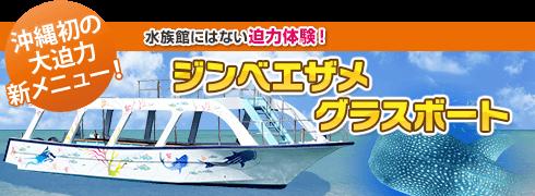 ジンベエザメグラスボート